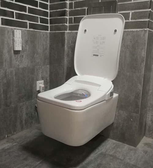 smart intelligent toilet bidet