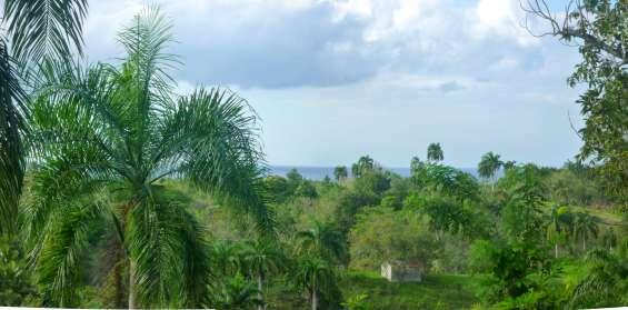 Grande y bello solar boscoso 3640 m2 , con vistal al mar .